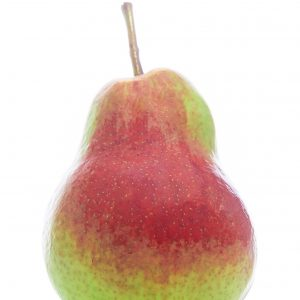 FLAMINGO Pear