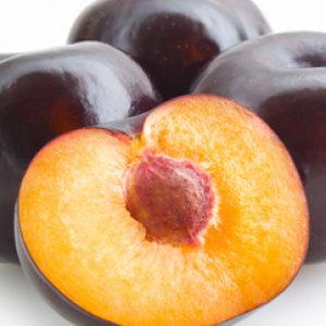 Southern-Belle_Plum